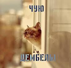 http://sa.uploads.ru/t/ABHnu.jpg