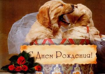 http://sa.uploads.ru/t/Bb0eH.jpg