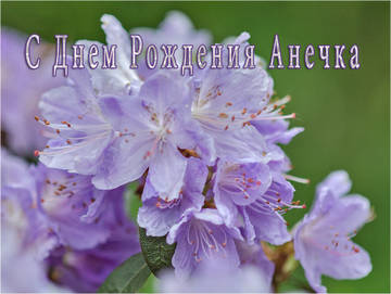 http://sa.uploads.ru/t/JbTlP.jpg