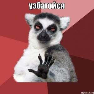 http://sa.uploads.ru/t/LnQ2O.jpg