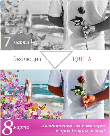 http://sa.uploads.ru/t/Mw8ZG.jpg