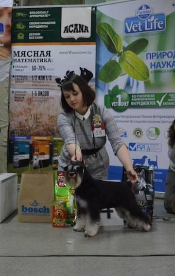 http://sa.uploads.ru/t/OZCbD.jpg