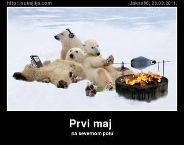 http://sa.uploads.ru/t/RH10s.jpg