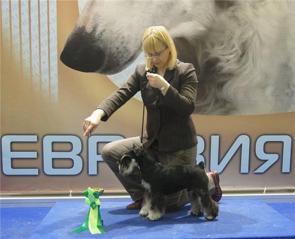http://sa.uploads.ru/t/V5IpW.jpg