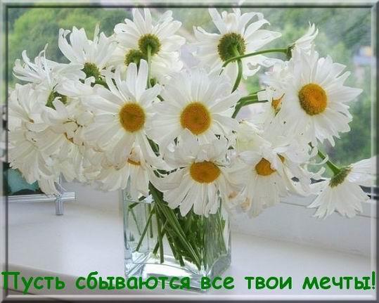http://sa.uploads.ru/t/bB2S8.jpg