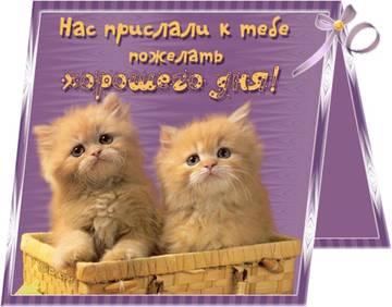 http://sa.uploads.ru/t/fHPvn.jpg