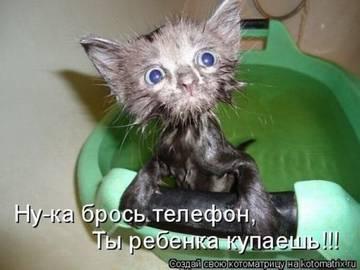 http://sa.uploads.ru/t/jQRod.jpg