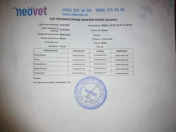 http://sa.uploads.ru/t/jeU8t.jpg