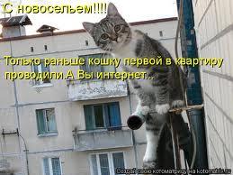 http://sa.uploads.ru/t/muQcX.jpg