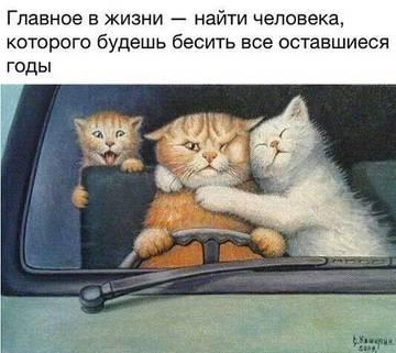 http://sa.uploads.ru/t/mxIi4.jpg