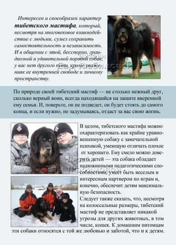 http://sa.uploads.ru/t/qeUlH.jpg