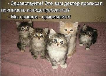 http://sa.uploads.ru/t/xKlA4.jpg