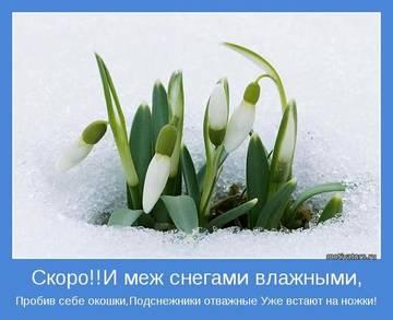 http://sa.uploads.ru/t/zUjxZ.jpg