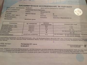 http://sa.uploads.ru/t/zsAvV.jpg