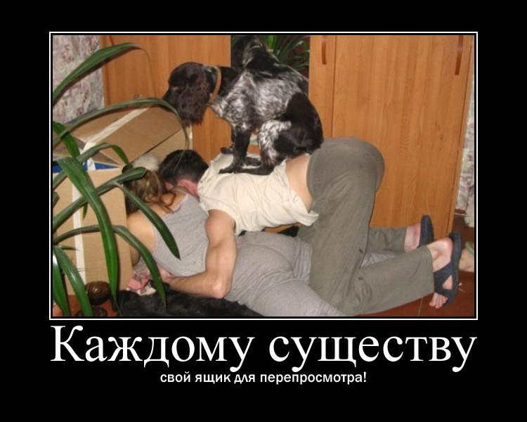 http://sa.uploads.ru/tEbak.jpg